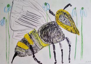 Riho märkas, et mesilased juba toimetavad lillepeenras.